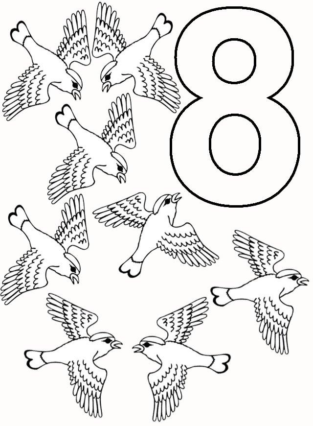 8 pasari