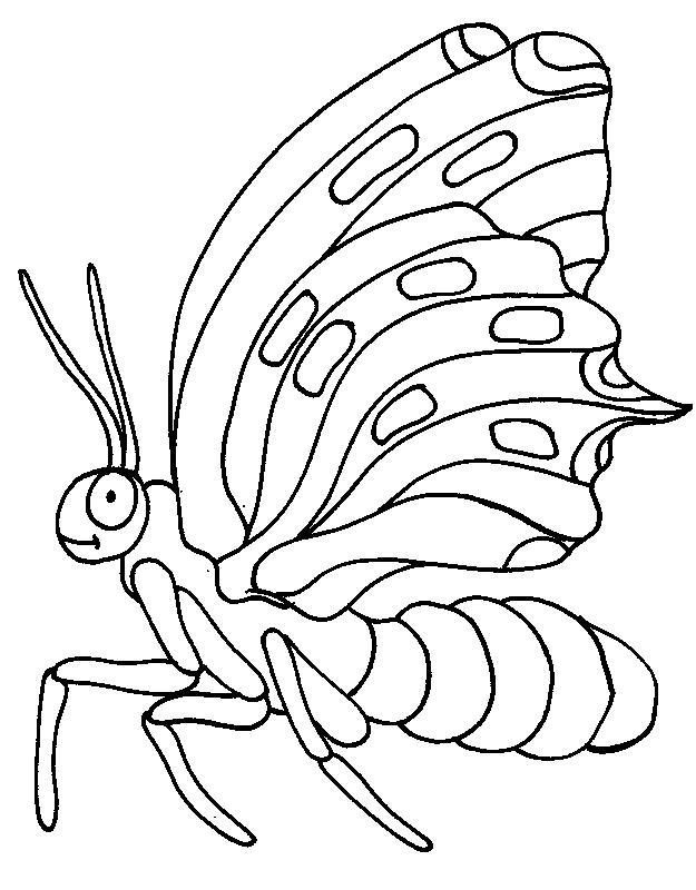 Specie De Fluturi Mari Plansa De Colorat Sfatulmamicilorro