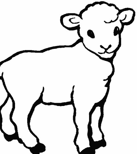sheep and dogs coloring pages - photo#29