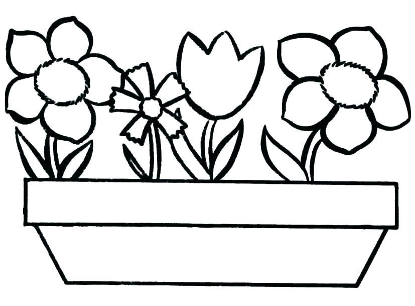 Flori In Ghiveci Plansa De Colorat Sfatulmamicilorro