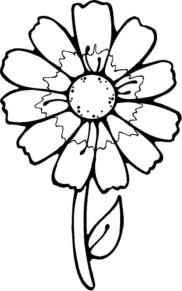 Flori In Vaza Plansa De Colorat Sfatulmamicilorro